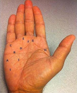 Astro palmistry - the connection between Astrology and